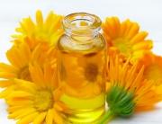 Caléndula - El ingrediente perfecto par la cosmética